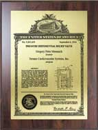 Value Patent Plaques-Wood Finish-Classic