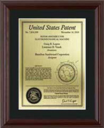 patent-plaques-wood-frame-contemporary
