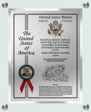 patent plaque-eagle-st-grn-sil-cus-sil